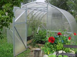 Greenhouses STRONG LIGHT