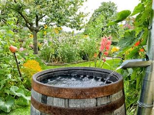 water-storage-and-rain-barrels