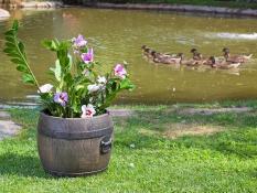 Flower pots BOLERO S