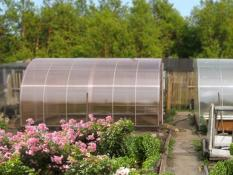 Greenhouses NANO