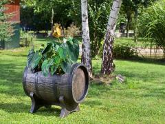 Flower pots SALSA M